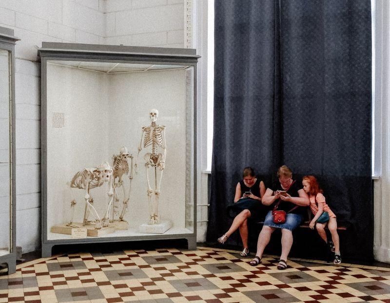 Ringvorlesung Einführung in die Angewandte Kulturwissenschaft: Museum and beyond. Das Museum – eine bürgerliche Institution auf Abruf? Geschichte, Gegenwart, Zukunft