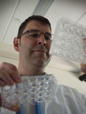 Dr. Steffen Scholpp (Foto: ITG, KIT)