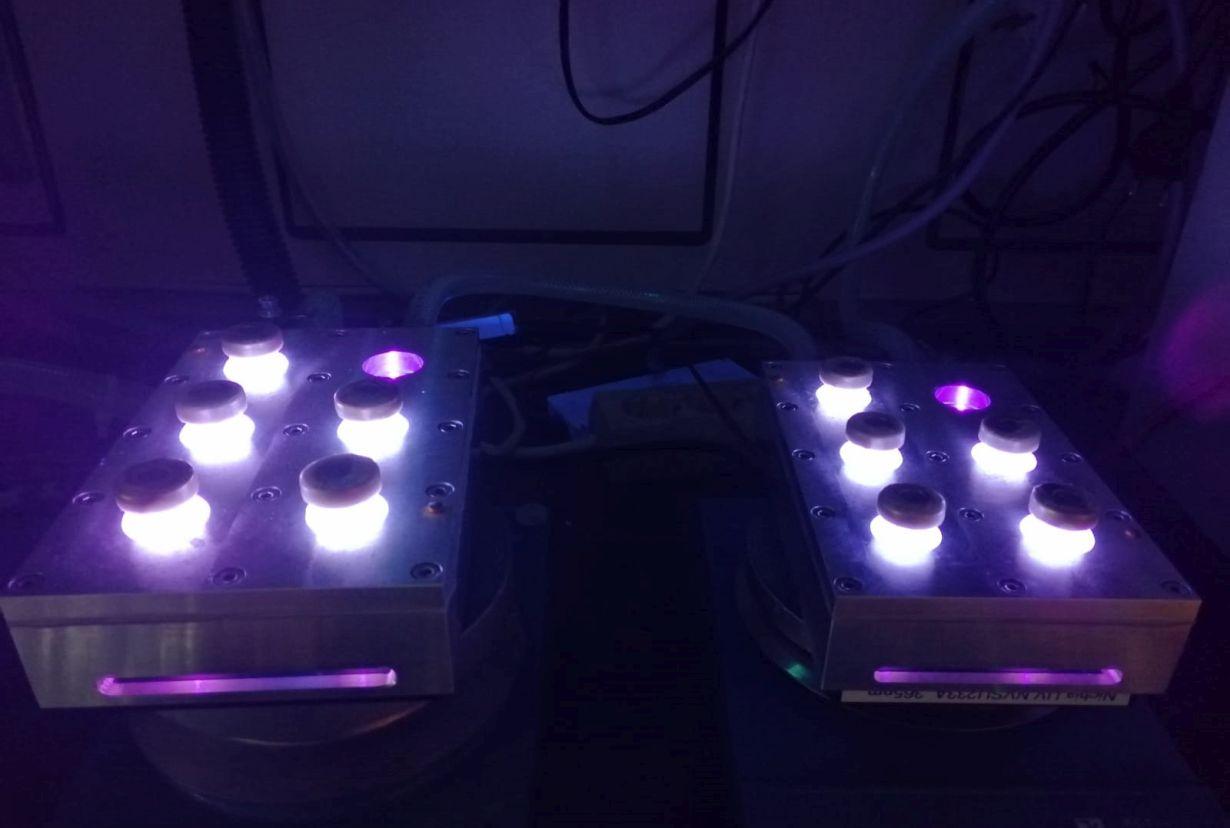 KIT研究人员发现远距离光能可造成DNA损伤
